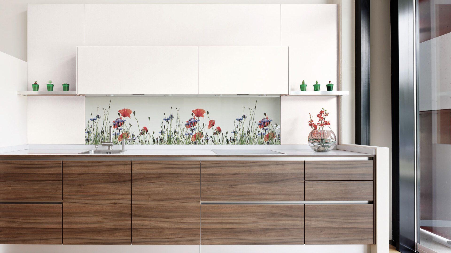 Küchenrückwände von Glas Marte im Miele Center Markant, Dornbirn
